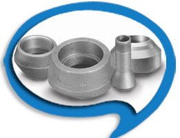 olets-suppliers-india